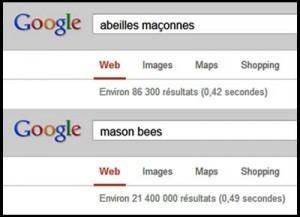 Abeilles maçonnes sont moins connues en France.
