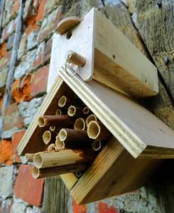 Boite pour les cocons d'abeilles solitaires sur un chalet