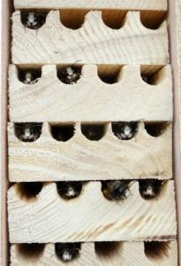les-abeilles-prennent-refuge
