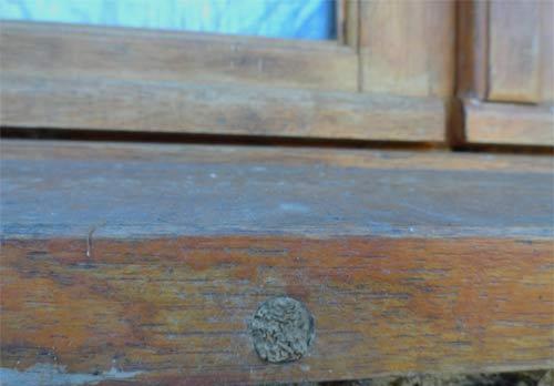 Trou d'aération de fenêtre bouché par une abeille